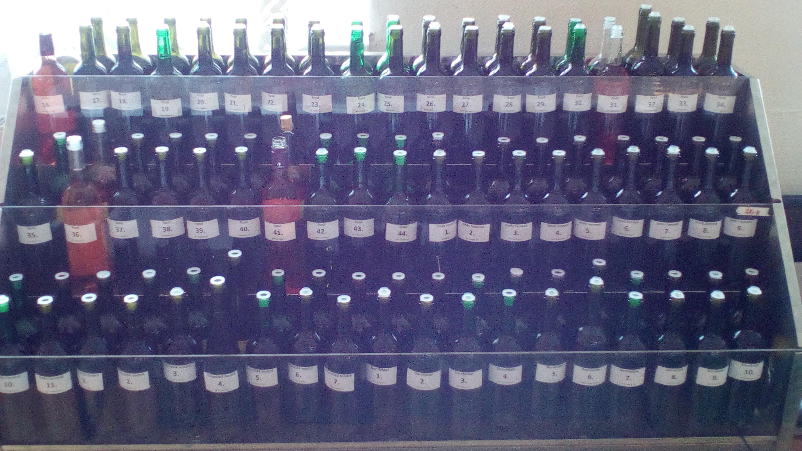 Tradiční výstava vín