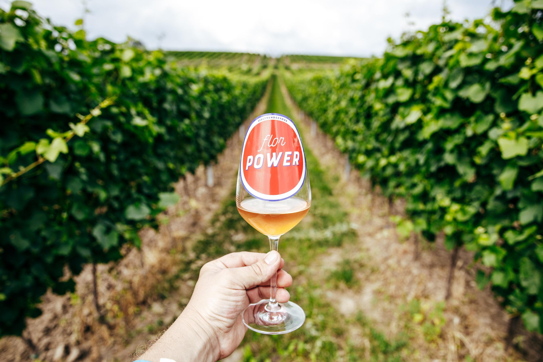 Letní slavnost autentických vín