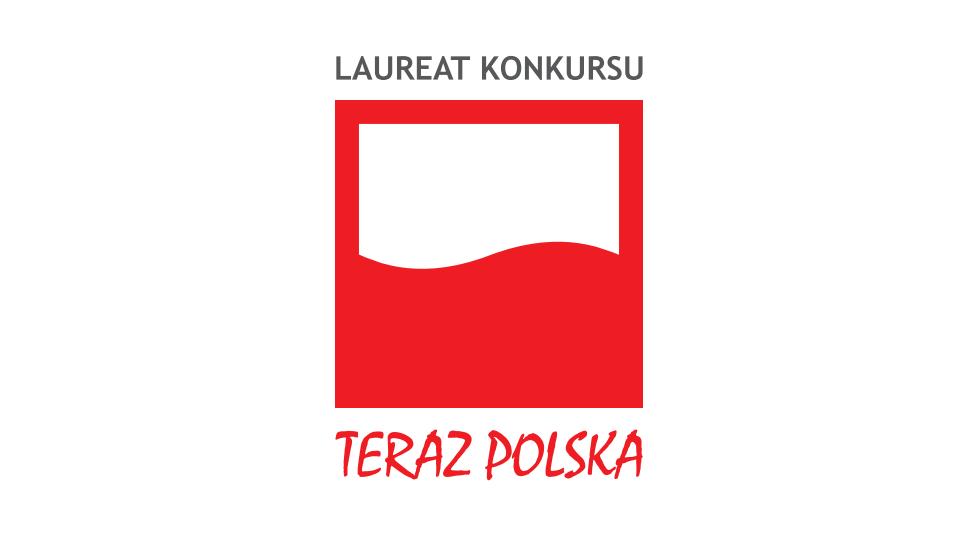 Now Poland logo