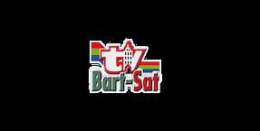 Bart-Sat