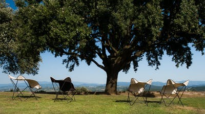 The front garden of Villa Tavernaccia has a beutiful vista of the Chianti countryside.