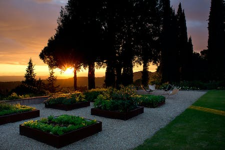 Villa Tavernaccia's bioactive vegetable garden