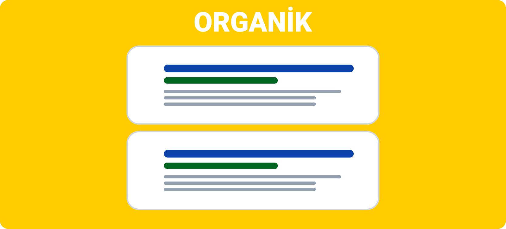 Organik Arama Sonuçları