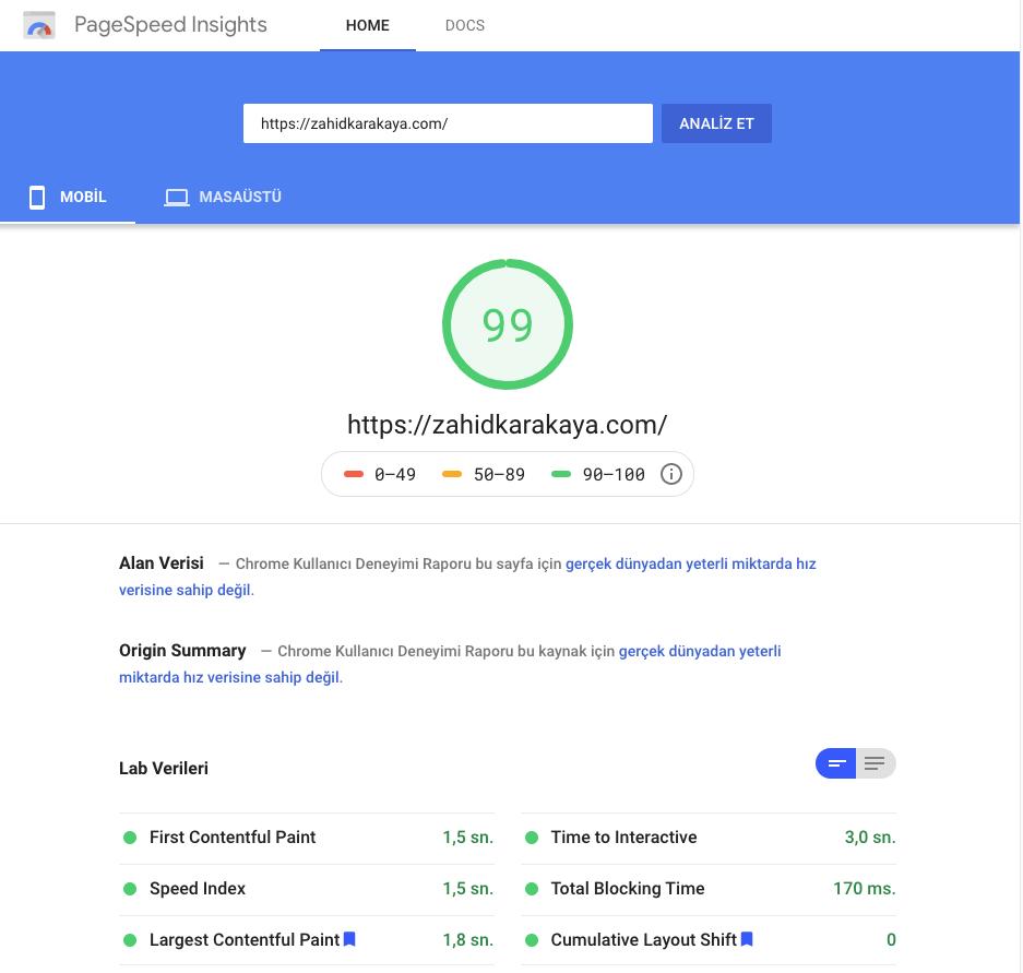 PageSpeed Sayfa Hızı Sonuçları
