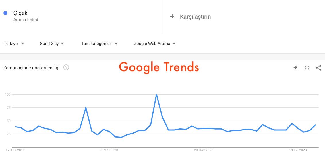 Google Trends Verileri