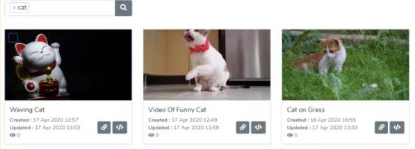 Cat video tag