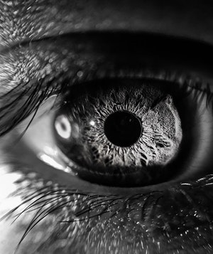 5 Ways the Human Eye Impacts How We Do Video Compression