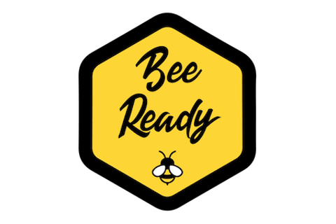 Case Study: How Beeready.io used api.video to create an interview training platform