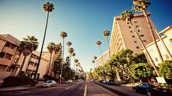 Palm streets of Beverly Hills in  Los Angeles, California