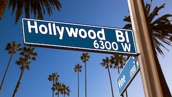 Hollywood Boulevard signage on palm trees