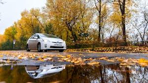 White Toyota Prius on autumn road in rainy day