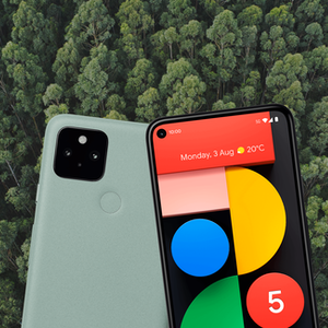 Google Pixel 5 on a green forest background