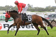 Photo of REDZEL