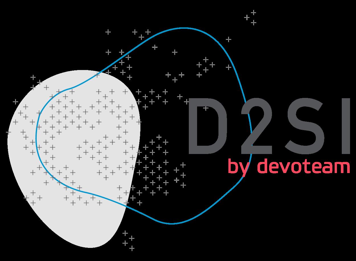 D2SI Logo