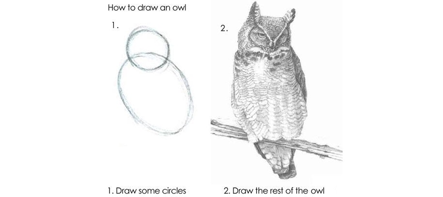 How to draw an owl: Step one, draw some circles. Step two, draw the rest of the owl.