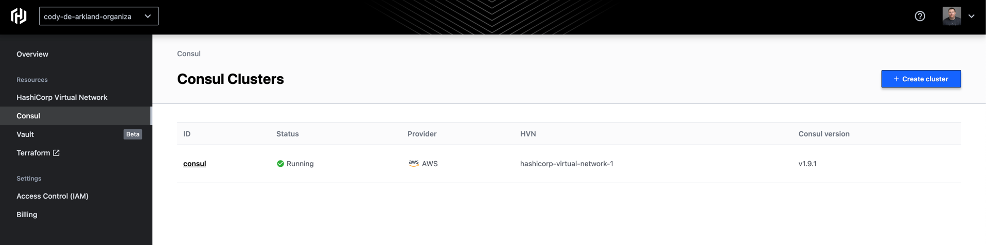 Deployed HCP Consul cluster