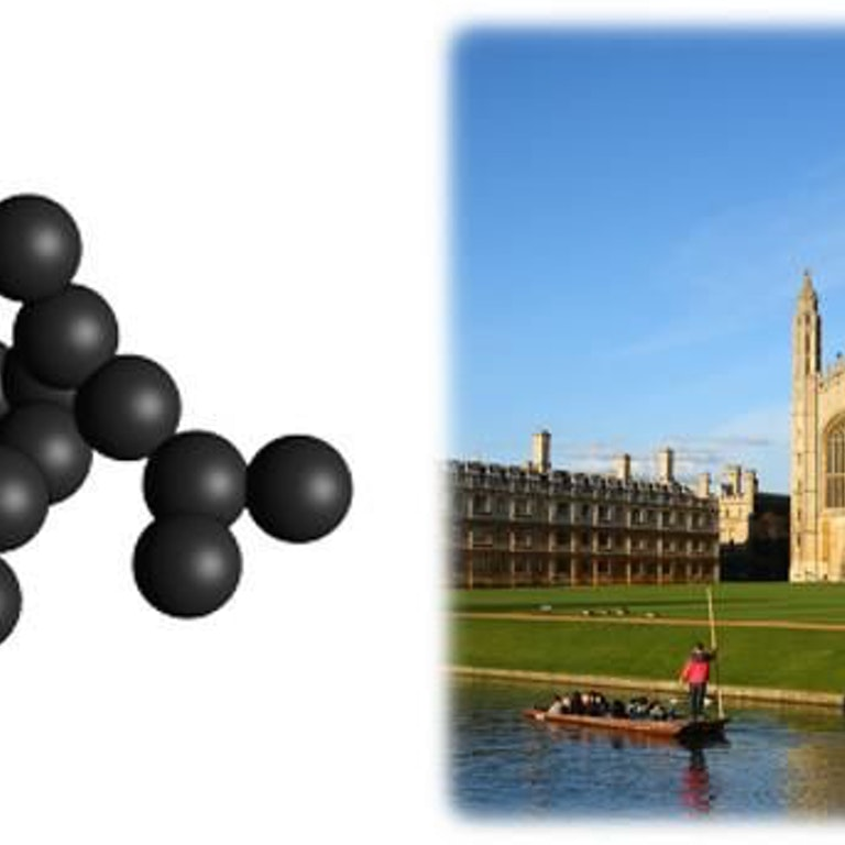 Cambridge Particle Meeting