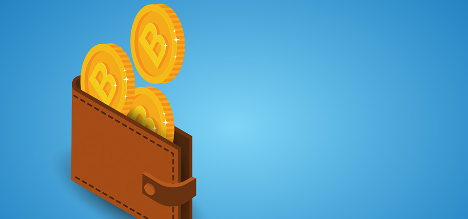Advantages of the LiteBit wallet