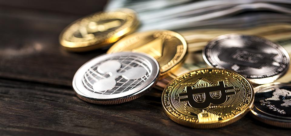 Bitcoin vs Altcoins