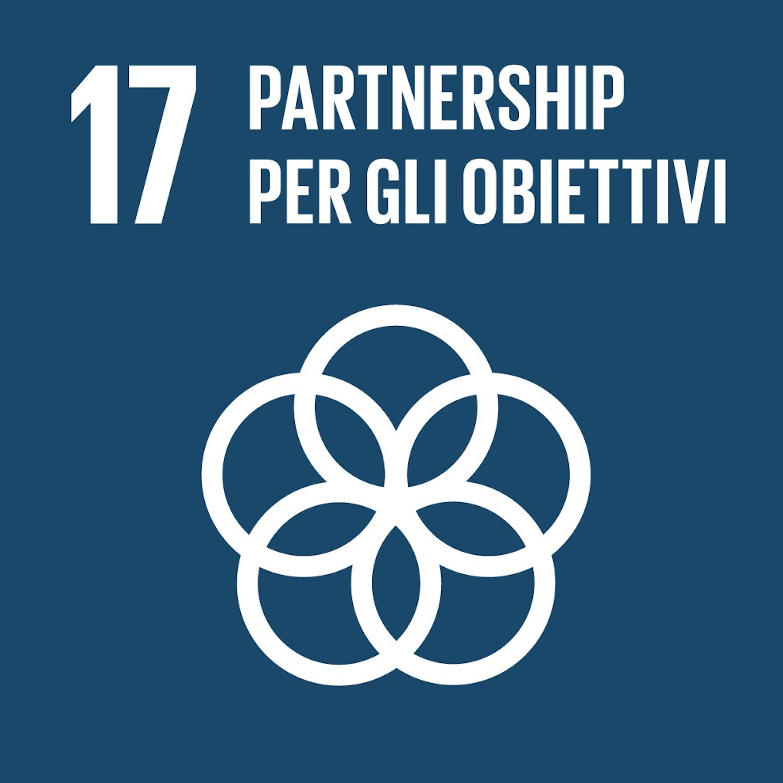 Logo SDG 17