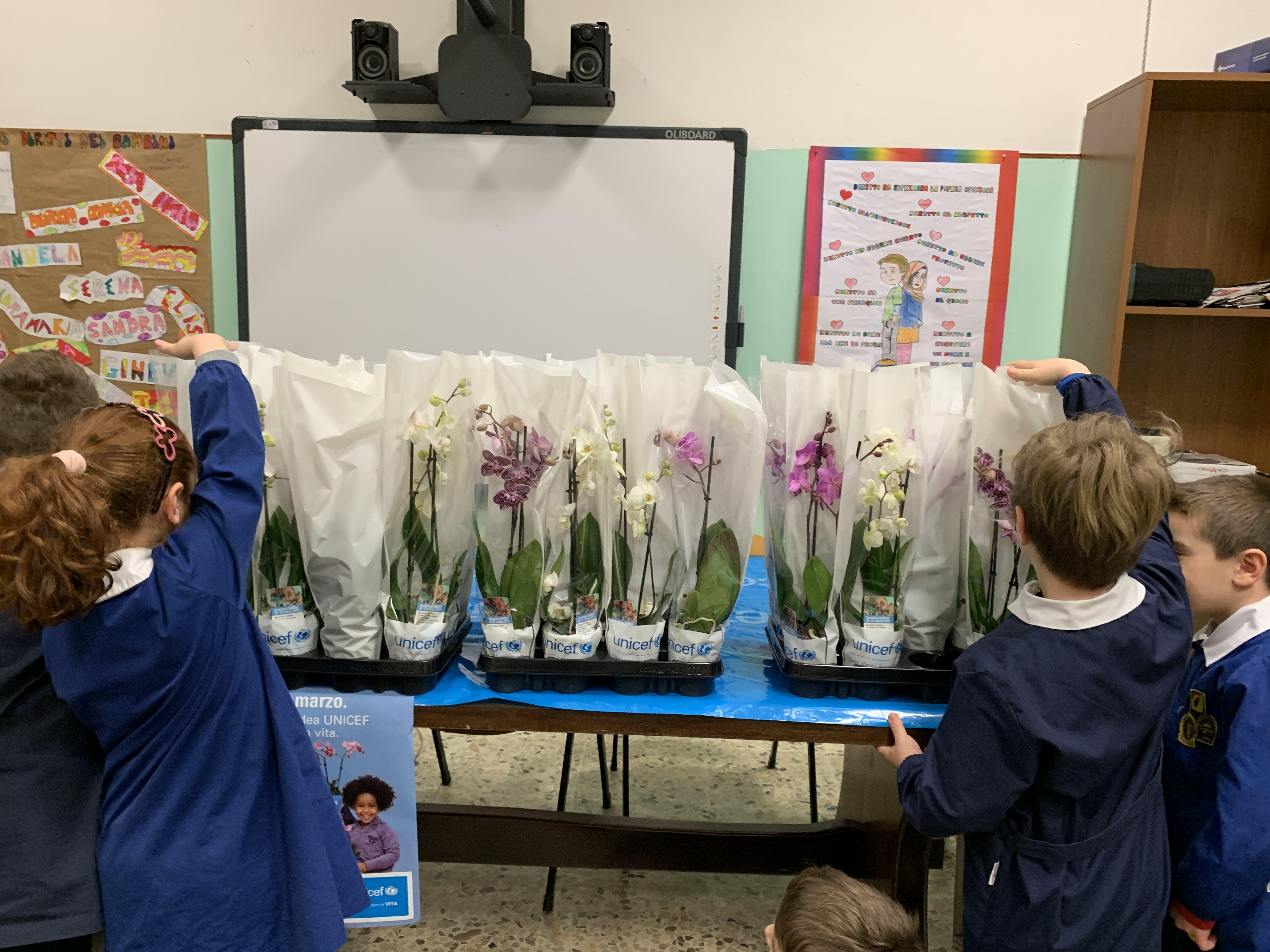Le Orchidee dell'UNICEF alla scuola Cialdi