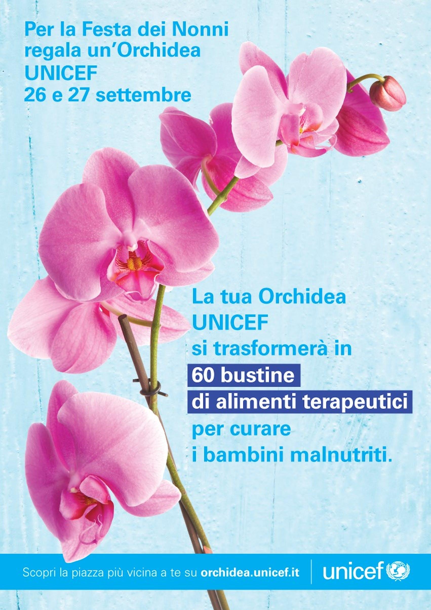 L'Orchidea UNICEF a Civitavecchia e nei comuni limitrofi