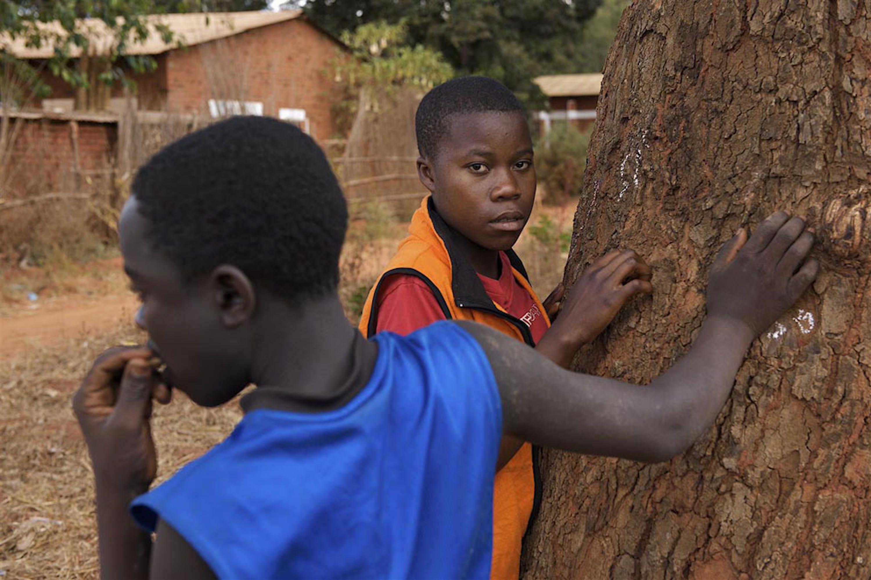 ©UNICEF Malawi/2010-0559/Shehzad Noorani