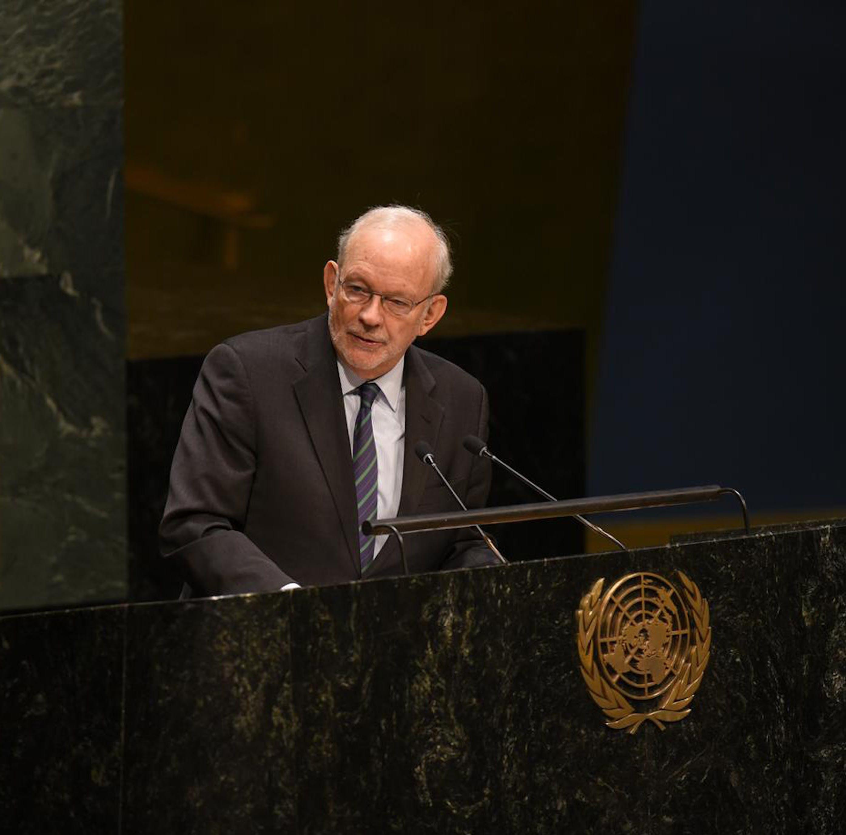 Il Direttore dell'UNICEF Anthony Lake nel corso di un suo recente intervento all'Assemblea Generale dell'ONU - ©UNICEF/NYHQ2014-3086/Berkwitz