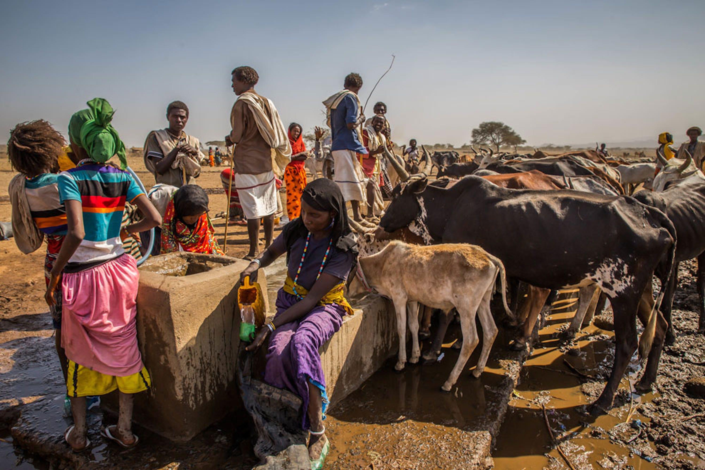 Bambini e adulti devono camminare anche per 10 ore per condurre il bestiame all'abbeveratoio di Qacha Chalu, Etiopia centrale - ©UNICEF/UN010148/Ayene