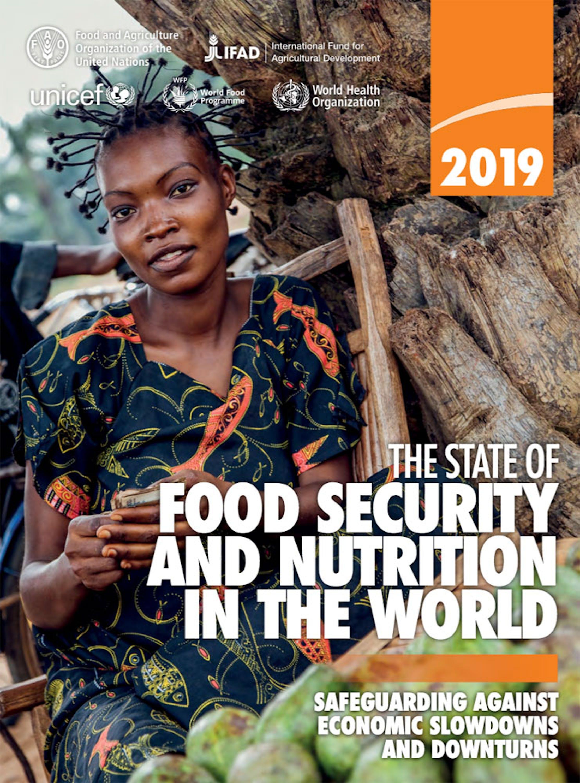 La copertina del rapporto ONU 2019 sulla nutrizione globale
