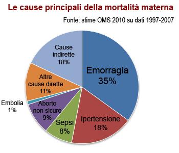 Diagramma delle principali cause di mortalità materna nel mondo: dati OMS 2010