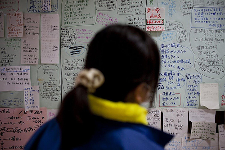 Una donna cerca nominativi di persone care su una bacheca coperta di migliaia di nomi di persone disperse a seguito dello tsunami nella cittadina di Rikuzen-Takaata, nella prefettura di Iwate - ©UNICEF/NYHQ2011-0429/Adam Dean