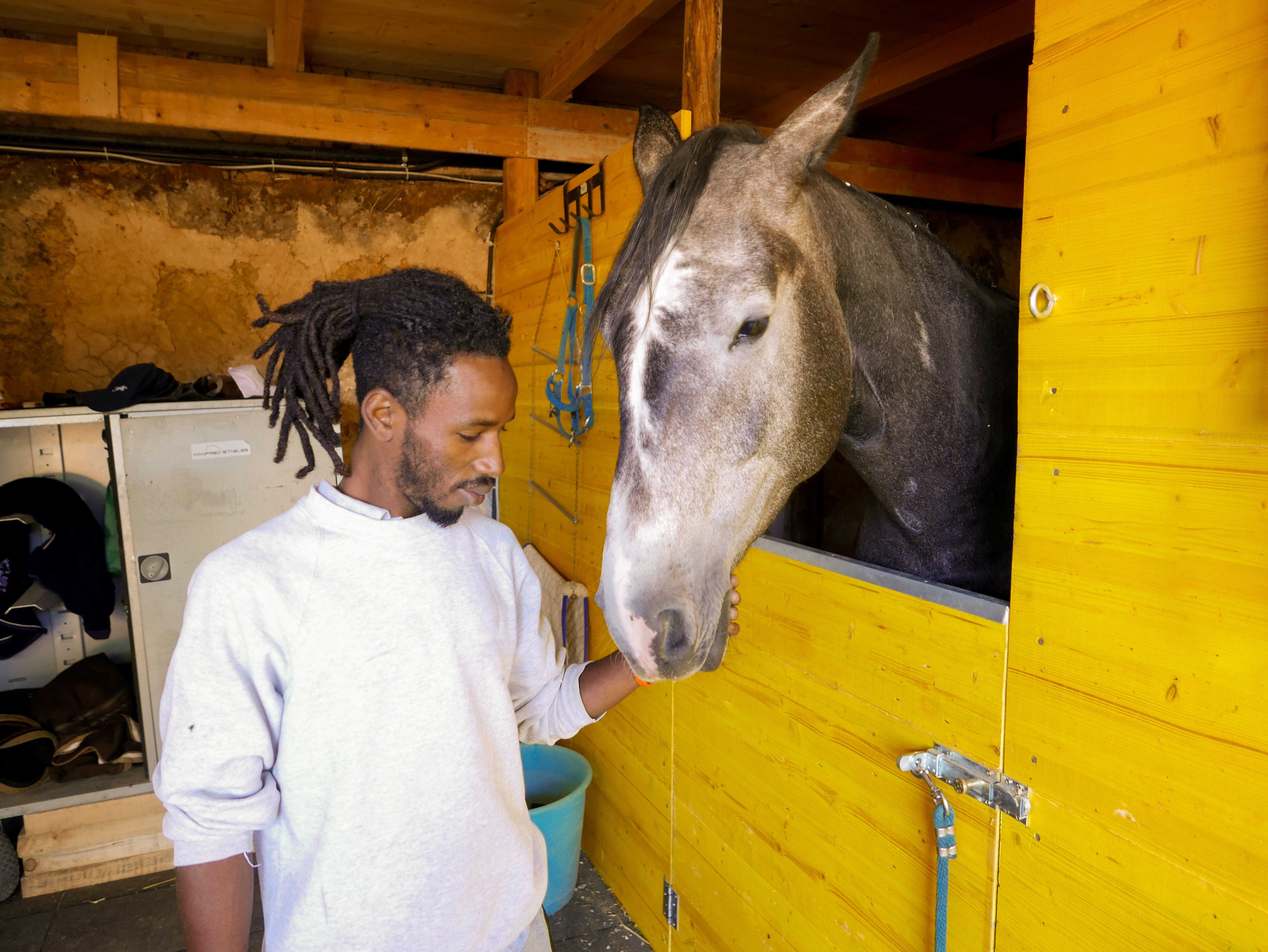 Modou, giovane rifugiato del Gambia, sorride accarezzando uno dei cavalli del maneggio