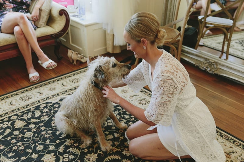 Bride pats her dog