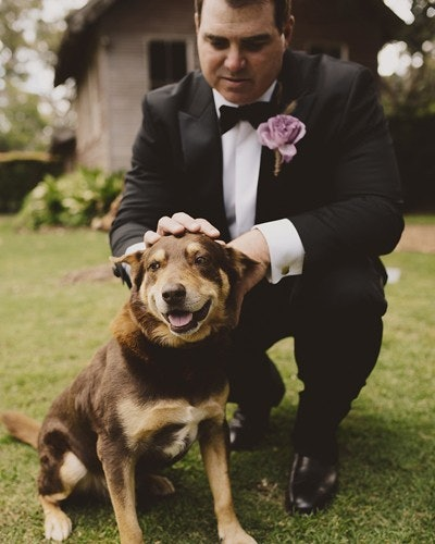 Groom pats pet dog on head