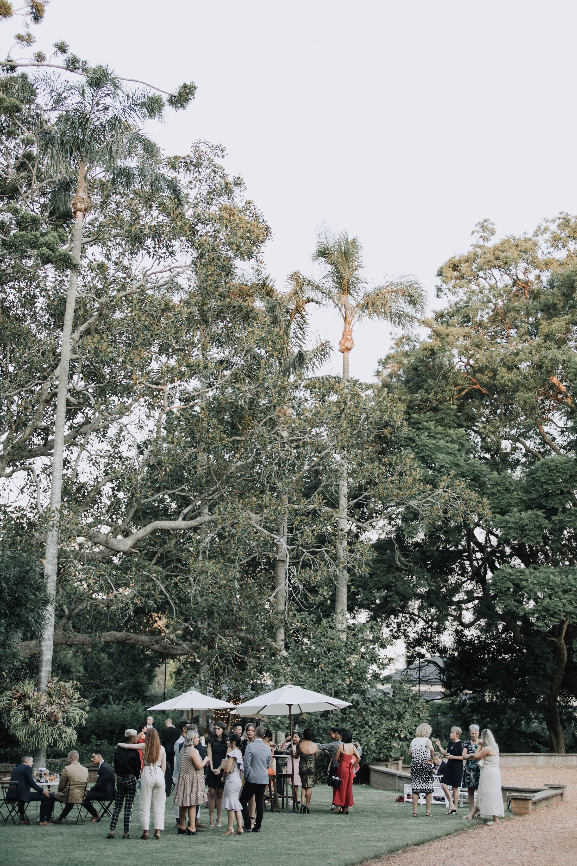 Garden party under big palm trees
