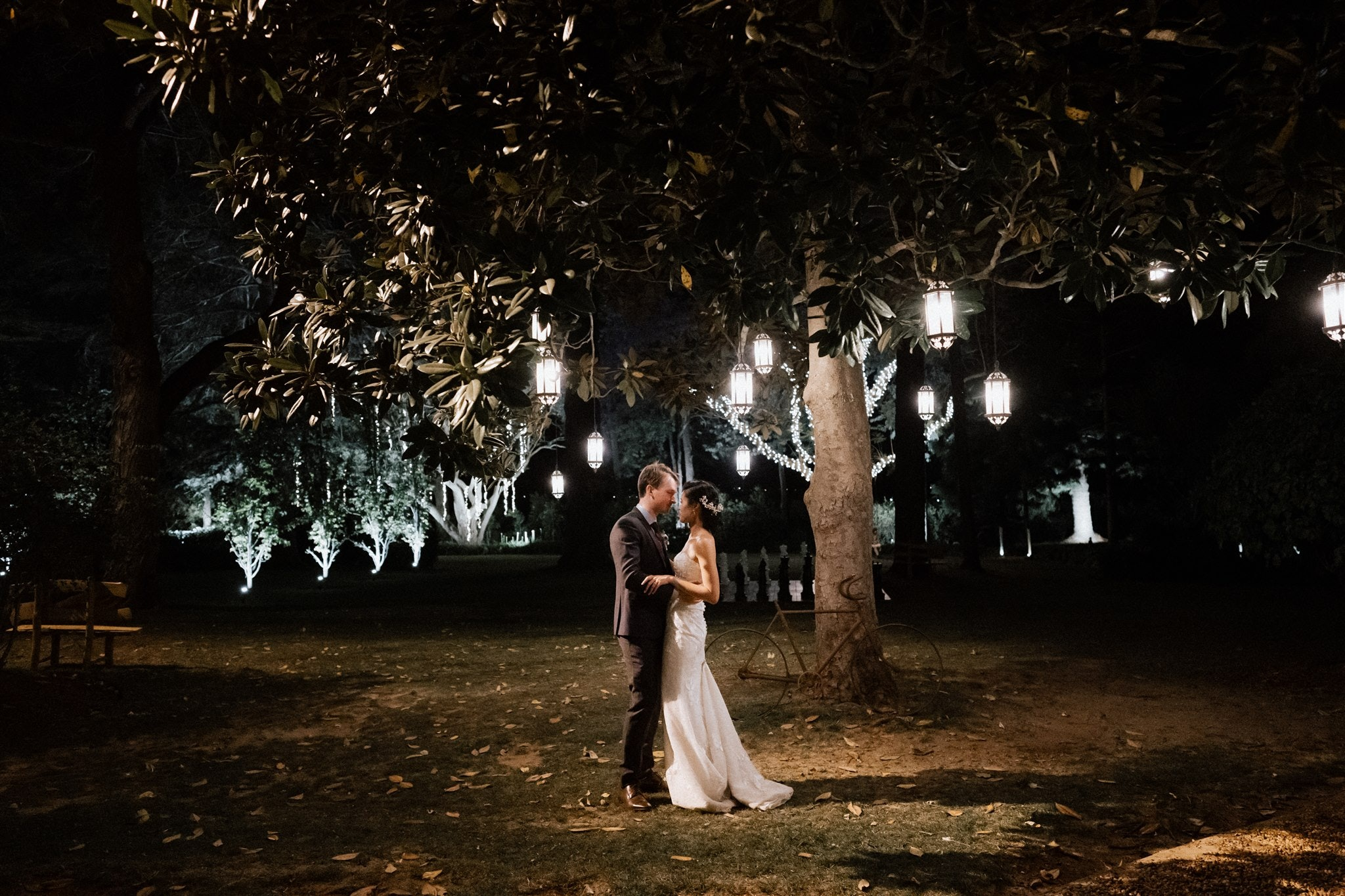 Couple dance under magnolia tree with lights at night