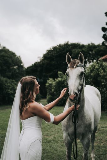 Bride gently pats her horse