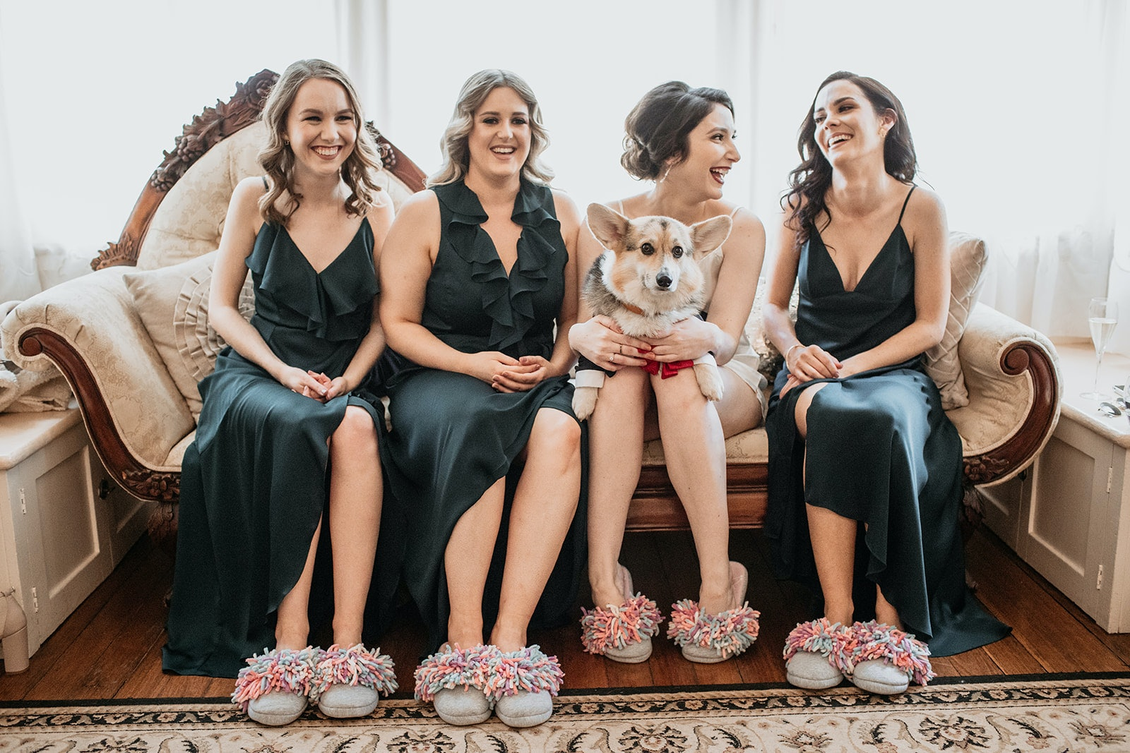 Dog sits on lap of bride and bridesmaids