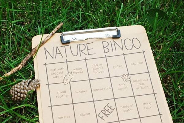 Nature bingo sheet on clipboard