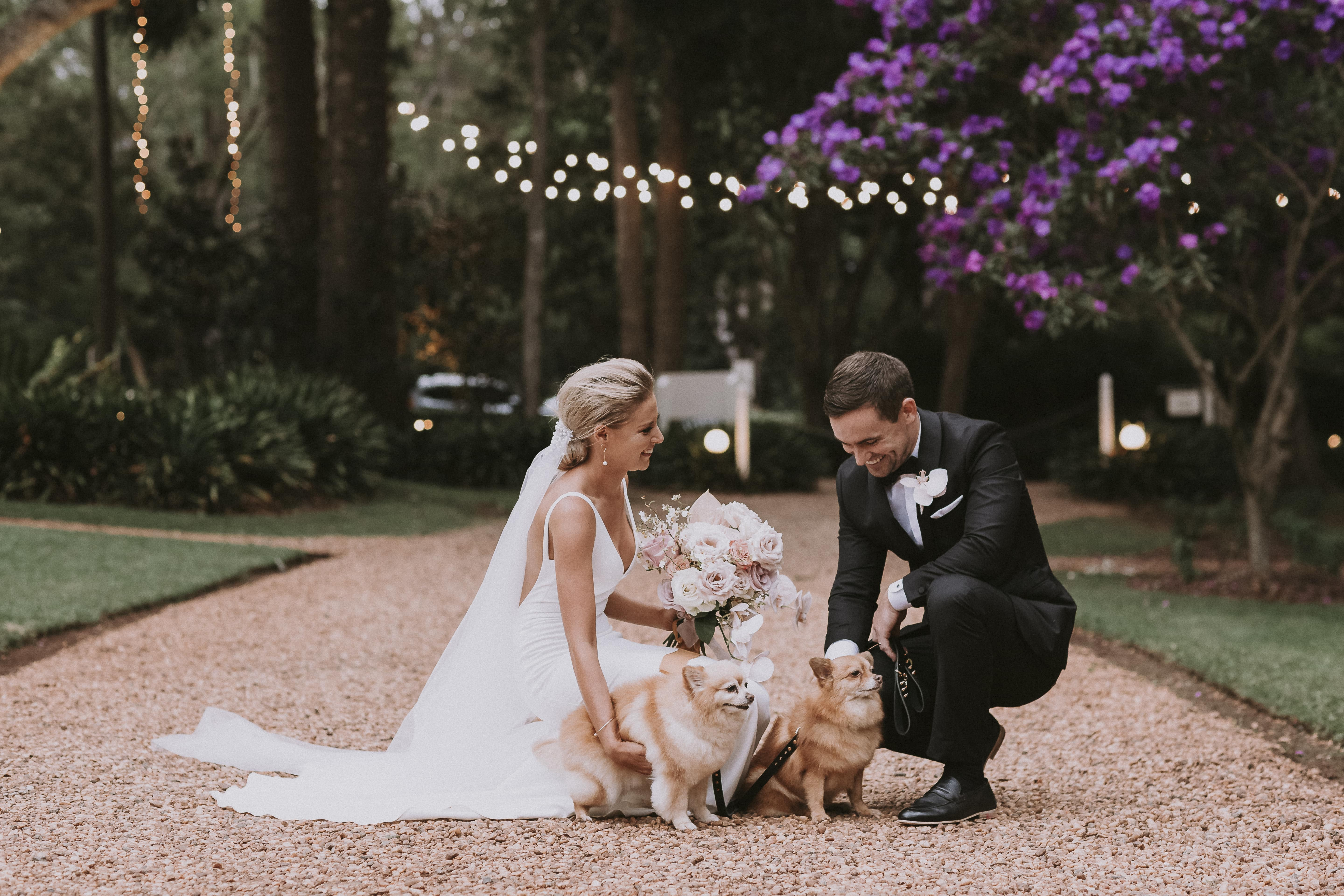 Couple pat their dogs after getting married