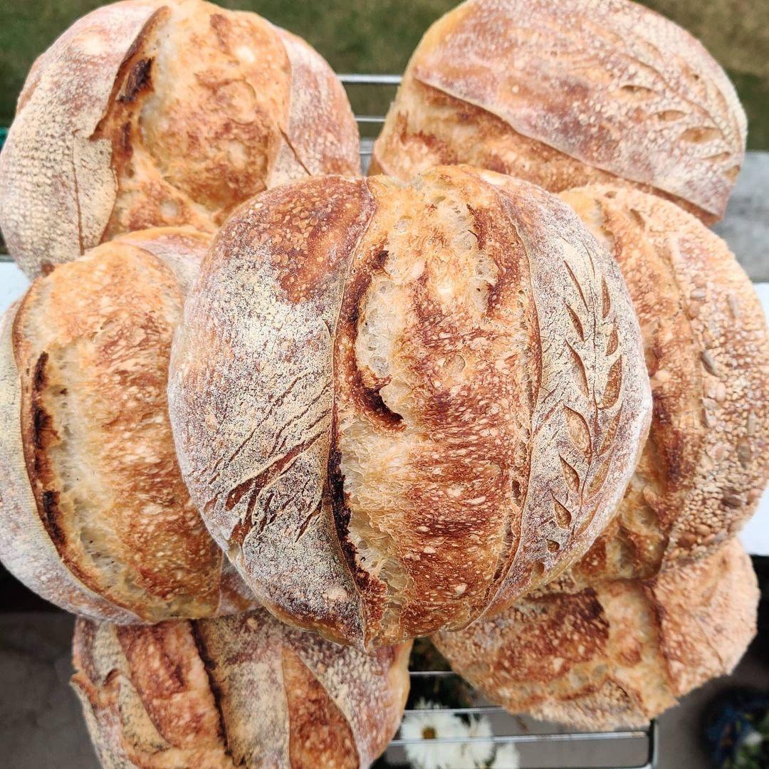 7 loaves of sourdough bread