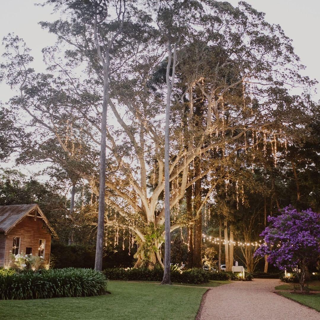 Gabbinbar Homestead night garden