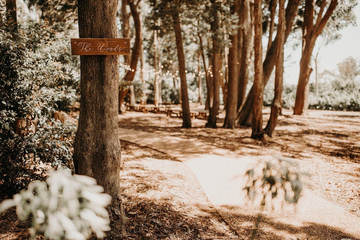 The Woods ceremony location