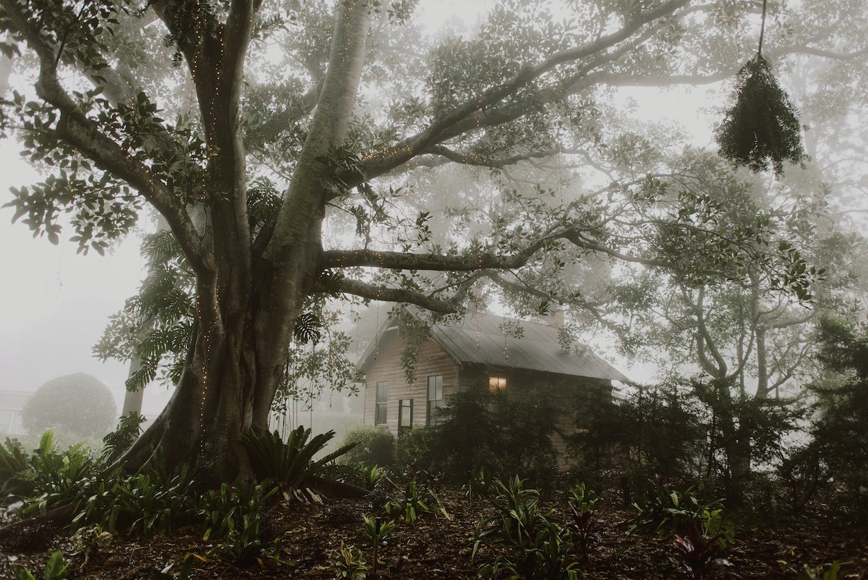 Old School House in the mist
