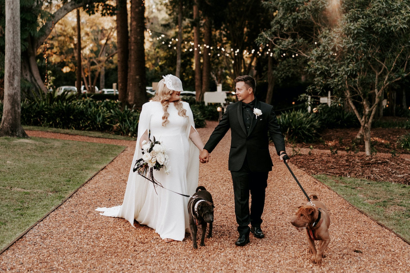 Groom and bride walking with dogs