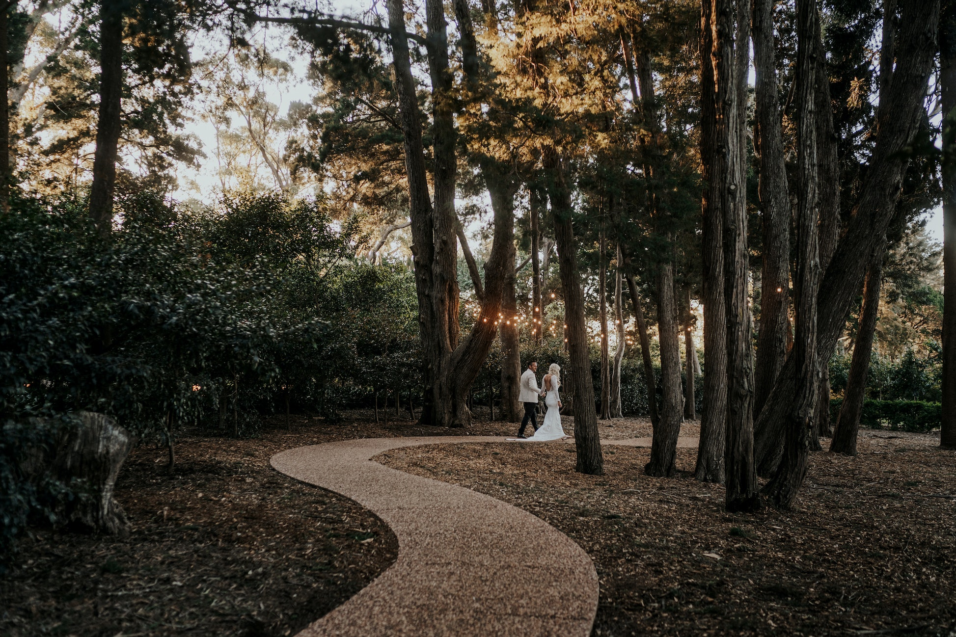 Long winding path through tall trees with couple walking in the distance
