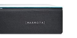 Marmota Live