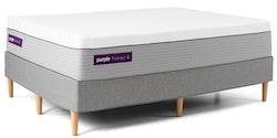 Purple Premier 4