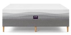 Purple Plus